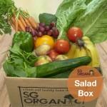salad box sgo