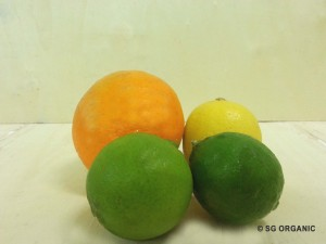 rainbow-citru-2 copy
