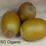 SG Organic_Kiwi Gold